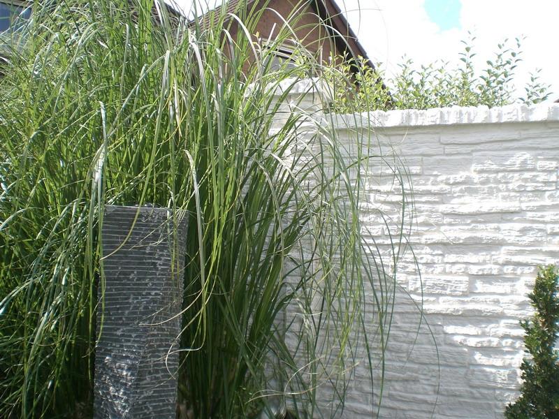 betonzaun gitterzaun und sichtschutz betonzaeune e kowalewski gartenbau und landschaftsbau. Black Bedroom Furniture Sets. Home Design Ideas